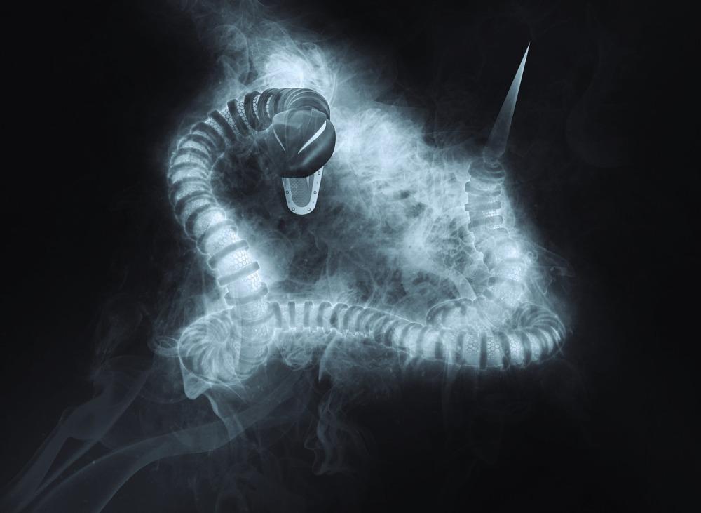 snake-1945345_1280